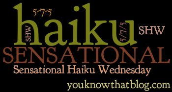 You know….that blog?  Sensational Haiku Wednesday