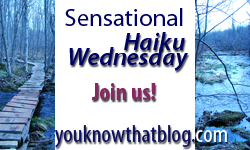 Sensational Haiku Wendesday